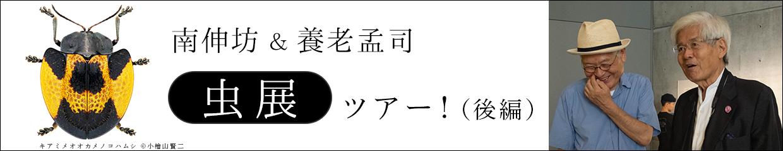 1240x240_02_re3