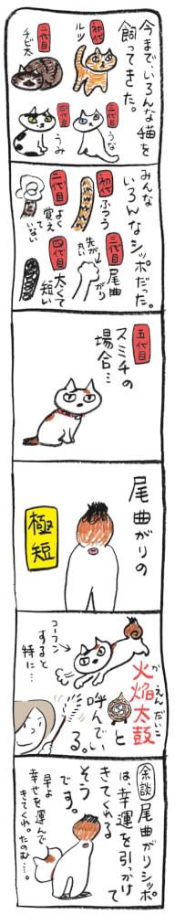 大高郁子「考える猫のその日暮らし」